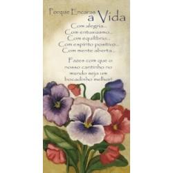 Feelings Vela - ELOGIO Ref. FVP 017