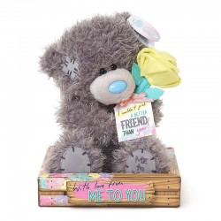 MTY PELUCHE M7 FRIENDSHIP WITH ROSE REF.G01W4098